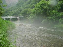 きれいな渓流