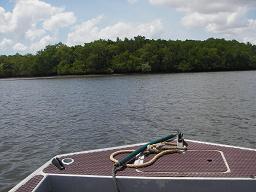 ボートの上から撮影
