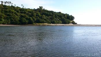 河口付近のチェック
